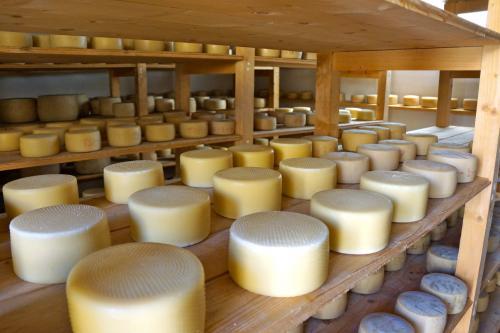 Sardinian cheese production