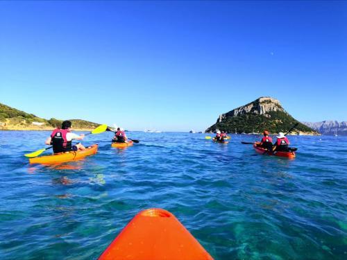 Gruppo di escursionisti all'Isola Figarolo in kayak
