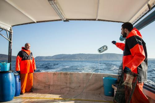 Pescatori a bordo di una barca nel Golfo dell'Asinara