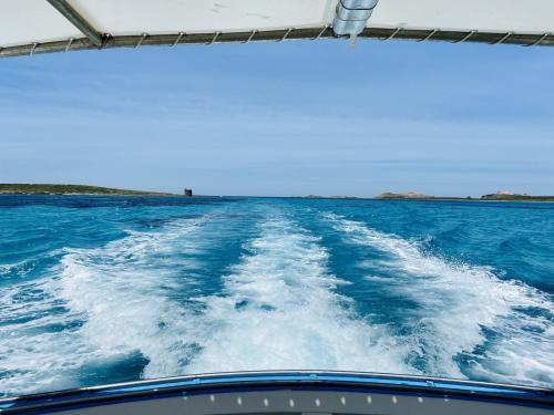 Barca da pescaturismo in navigazione nel Golfo dell'Asinara