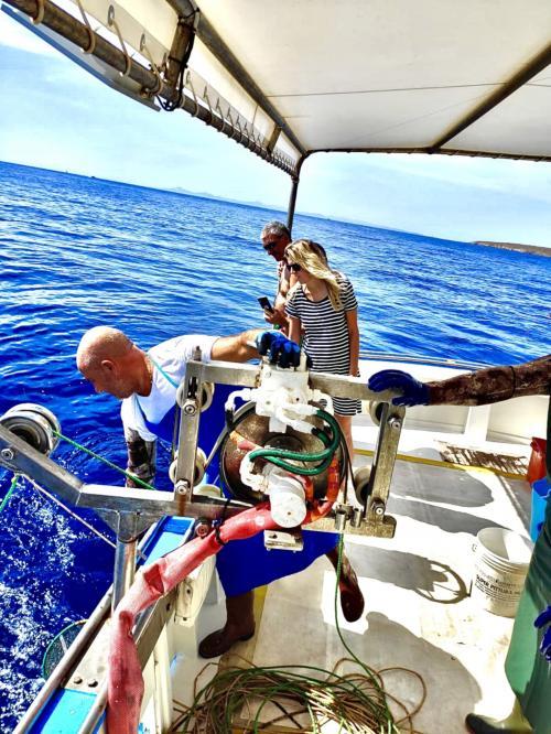 Momenti di un escursione di pescaturismo nel Golfo dell'Asinara