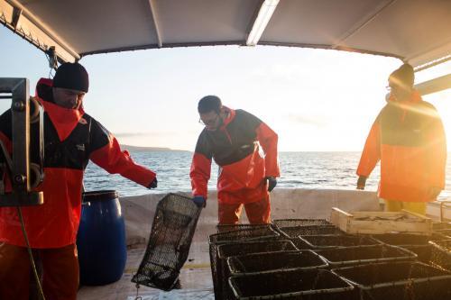 Pescatori durante pesca nel Golfo dell'Asinara