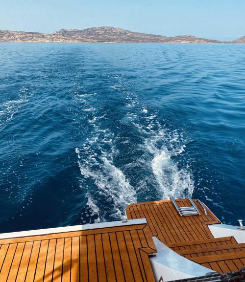 The Asinara sea