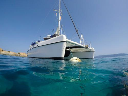 bow of the catamaran right side