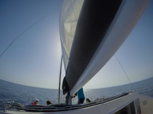 Vela catamarano nel Golfo dell'Asinara