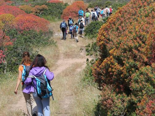 Trekking nel sentiero del Castellaccio