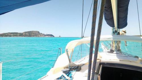 Sailboat sails to the island of Asinara from Stintino