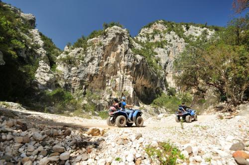 Quad in the Golgo plateau