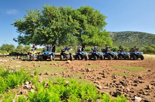 Group of friends on quad bikes in Ogliastra