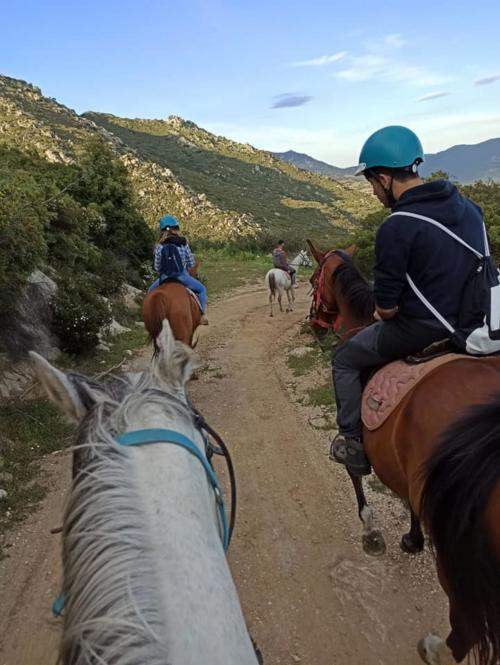 Horse hikers on a path in Orosei