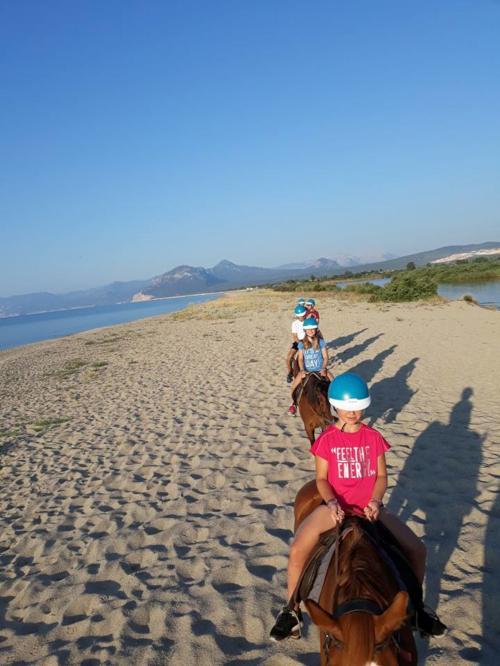 Horse ride for children on the beach in Orosei