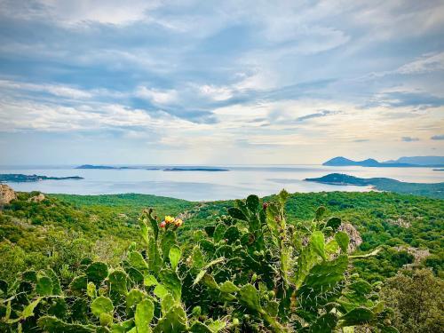Costa Smeralda und Landschaft