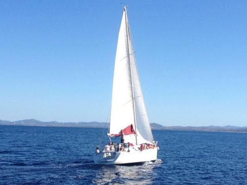 Sailing boat in the Gulf of Asinara