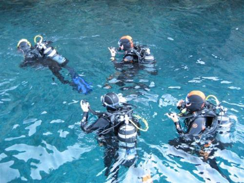 Group of guided dive hikers