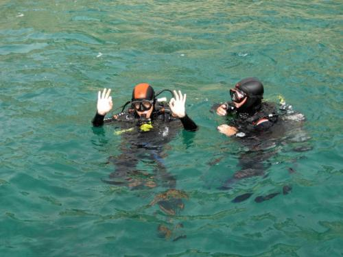 Hikers on snorkeling excursions