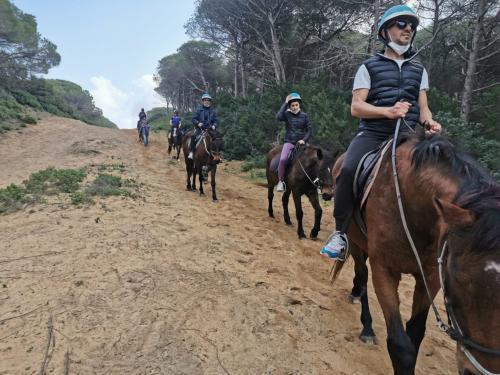Principianti a cavallo a Porto Ferro e Lago di Baratz