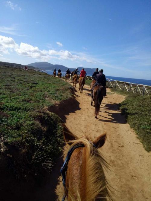 Hikers during horse riding experience