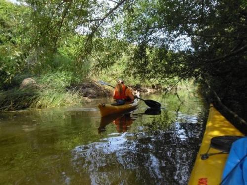 Person in einem Kanu inmitten der Natur der Coghinas