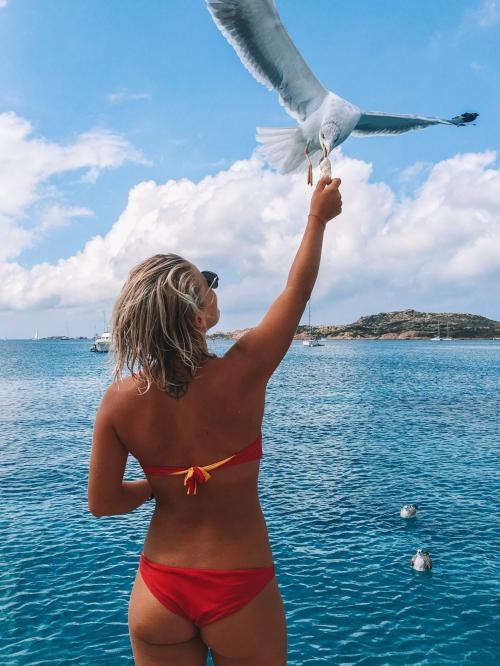 Girl with seagull