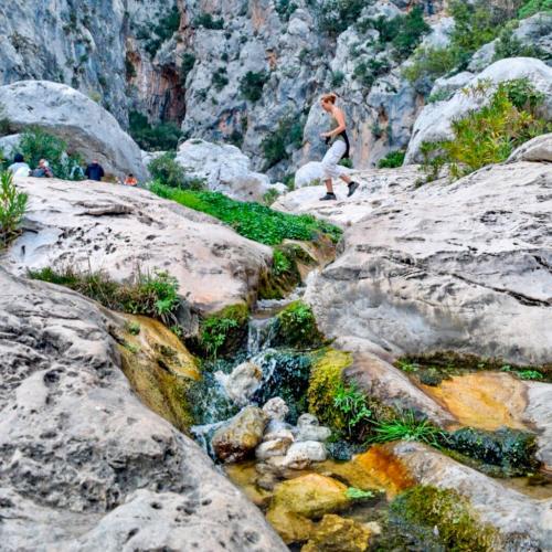 Guided trekking