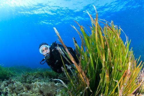 Battesimo subacqueo nel mare di Bosa