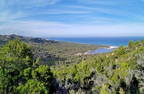 Panoramic view on Bidderosa