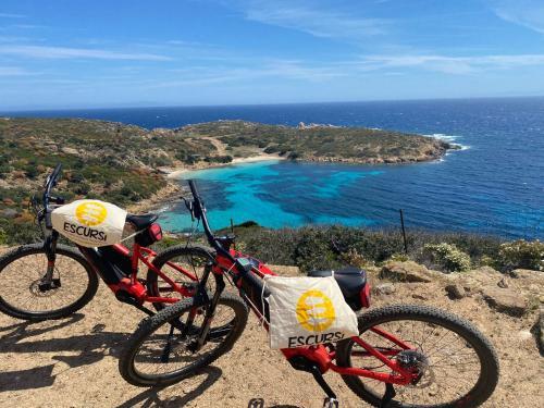 E-bikes Asinara