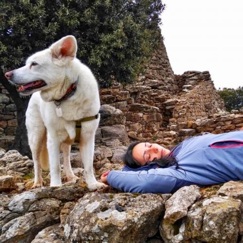 Wanderer und Hund