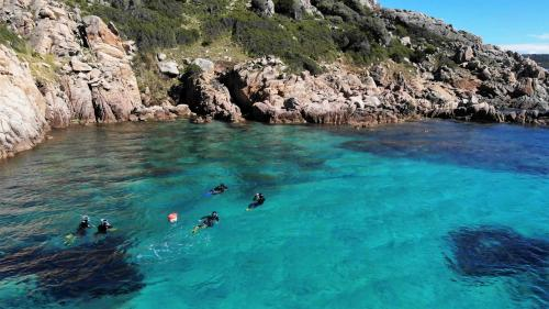 Guided snorkeling hikers
