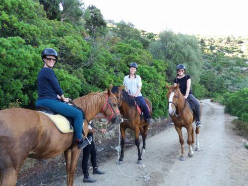 Girls on horseback excursion