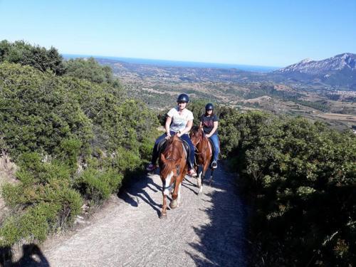 Hikers on horseback tours