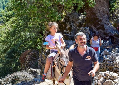 Little girl during donkey ride