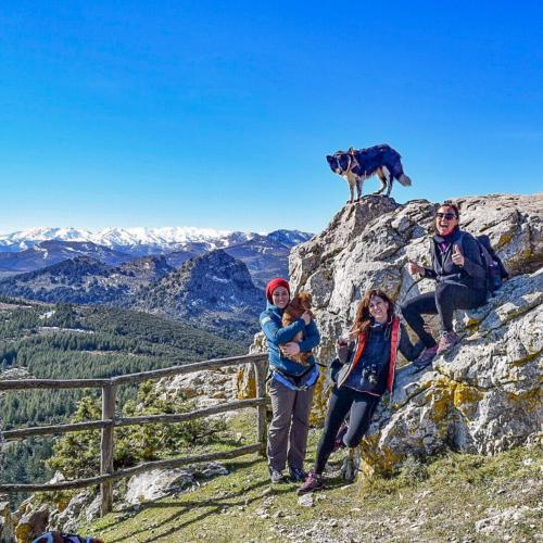Hikers and dog