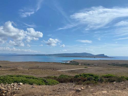 Panorama Asinara