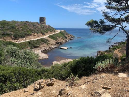 Mare dell'Asinara