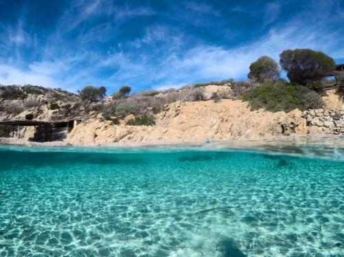 Kristallklares Meer an der Küste von Asinara