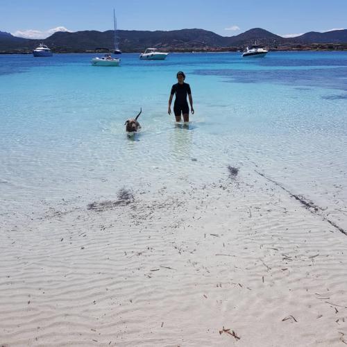 Ragazza con cane nel mare turchese della Costa Smeralda