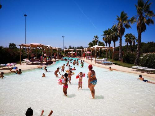 Grupo de niños en la piscina