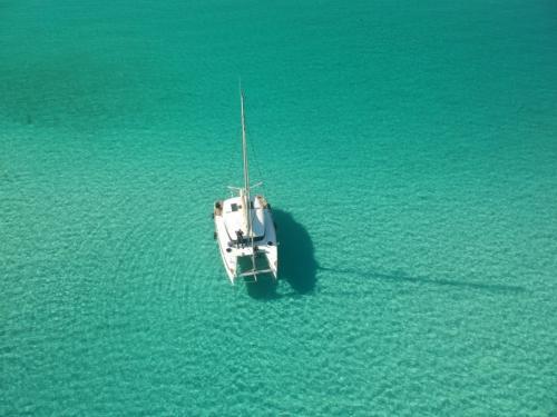 Catamaran in the blue sea of the Asinara Gulf