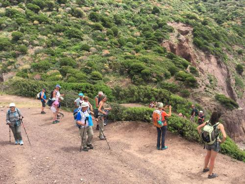 Group of hikers during trekking