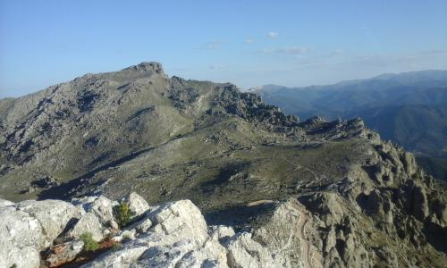 View from Monte Corrasi to Oliena