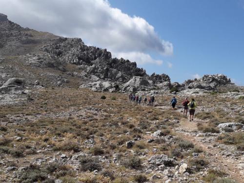 Trekking excursion in Monte Corrasi