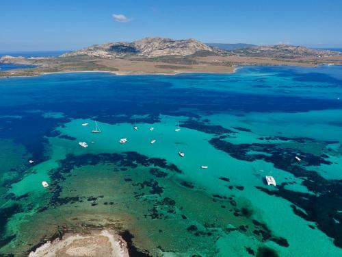 Gulf of Asinara