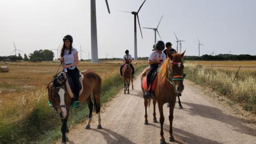 Gruppo di bambini durante escursione tra le pale eoliche nel territorio di Sedini