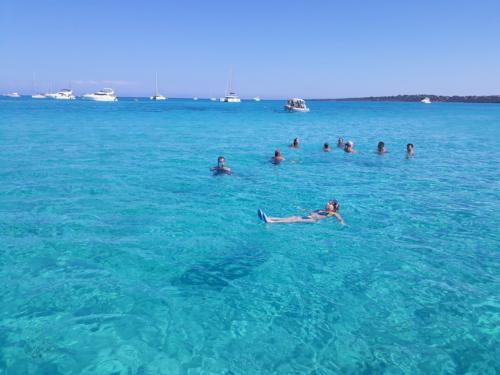 Gruppo di persone nuota nel mare dell'Asinara durante tour in gommone