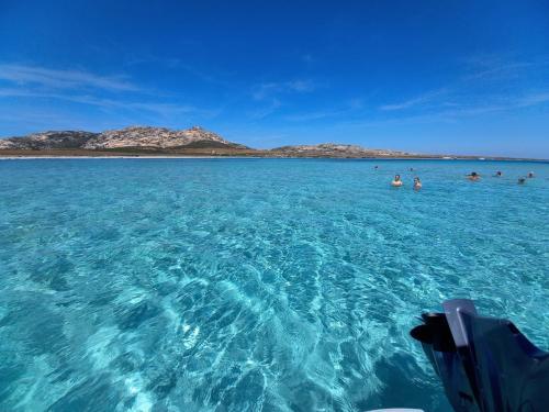 Turquoise sea of the Asinara Island