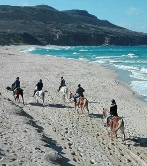 Group of hikers on horseback in Gonnesa