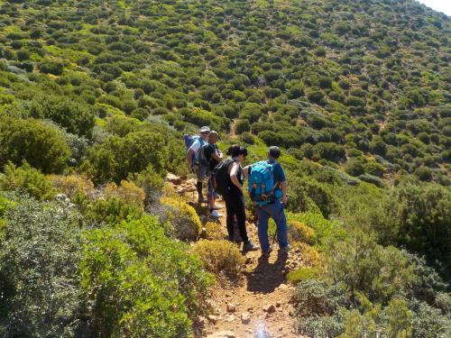 Guided hikers