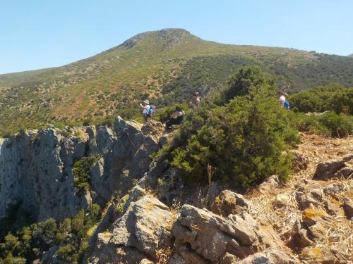 Guided trekking excursion