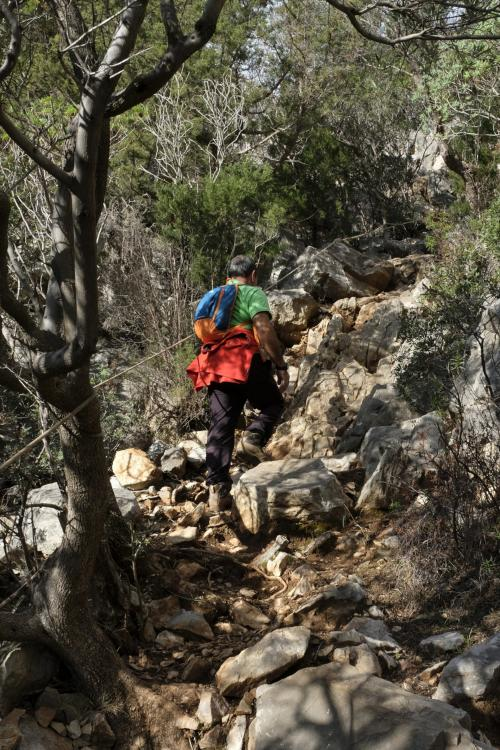 Hiker during a guided trekking route
